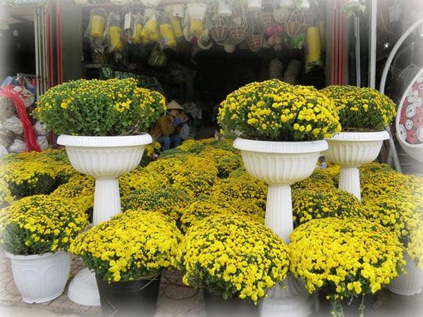 Trang trí ngày tết bằng hoa tươi