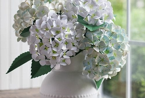 Hoa cẩm tú cầu bằng giấy